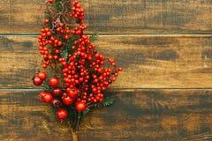 Rama de la Navidad con las frutas rojas Fotografía de archivo libre de regalías