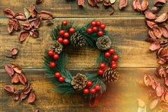 Rama de la Navidad con las frutas rojas Foto de archivo libre de regalías