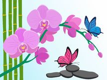 Rama de los troncos del orquídea, de bambú y de las mariposas rosados en pocilga plana Foto de archivo
