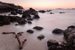 Rama de madera en la playa Fotos de archivo