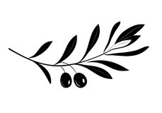 Rama de olivo con la silueta de las hojas y de las aceitunas Ilustración del Vector