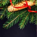 Rama de árbol de abeto de la Navidad con el cono del pino en tiza de la pizarra del vintage Fotos de archivo libres de regalías