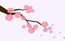 Rama de Sakura con las flores Rama de la flor de cerezo con caer de los pétalos ilustración del vector