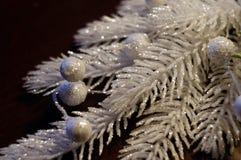 rama decorativa Plateado-blanca de la Navidad Fotos de archivo