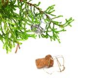 Rama del árbol de navidad casero decorativo con muselet del campeón Fotos de archivo libres de regalías