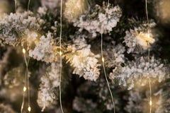 Rama del árbol de navidad con nieve y la guirnalda Imágenes de archivo libres de regalías