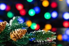 Rama del árbol de navidad con un terrón en la tabla negra imagen de archivo