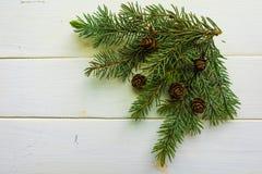 Rama del árbol de navidad y de conos en tableros blanco-pintados Fotos de archivo