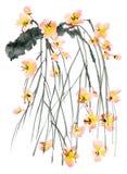 Rama del árbol del flor Foto de archivo libre de regalías