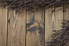 Rama del abedul en fondo de madera Imagenes de archivo