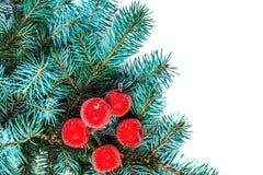 Rama del abeto con las decoraciones de la Navidad aisladas en el backgrou blanco Foto de archivo