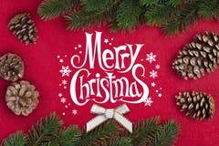 Rama del abeto de la Navidad Fotografía de archivo libre de regalías