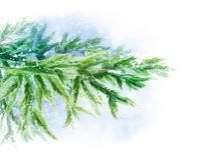 Rama del bosque de la picea en la nieve Ilustración de la acuarela Plantilla del fondo para los carteles del diseño, casandose libre illustration