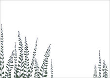 Rama del fondo con las hojas Imagen de archivo