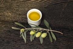 Rama del olivo con las bayas de la aceituna verde y el casquillo de o fresco Imagen de archivo
