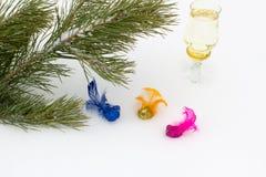 Rama del pino con los pájaros multicolores decorativos Foto de archivo libre de regalías