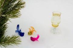 Rama del pino con los pájaros multicolores decorativos Fotos de archivo libres de regalías