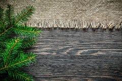Rama del pino de la arpillera del vintage en fondo de la Navidad del tablero de madera fotografía de archivo