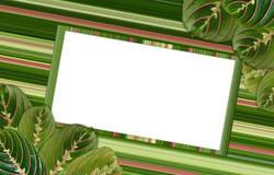 Rama dla inskrypcj otaczać liśćmi Obrazy Stock