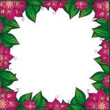 Rama dla twój teksta z kwiecistym tłem Kartka z pozdrowieniami, zaproszenie, sztandar również zwrócić corel ilustracji wektora Ilustracji
