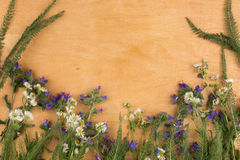 Rama dzicy kwiaty kłama na lekkiej drewnianej powierzchni obrazy royalty free