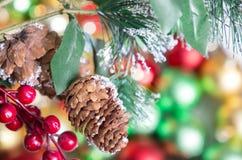 Rama en bolas coloridas de la Navidad, fondo abstracto del abeto Fotografía de archivo libre de regalías