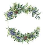 Rama floral del invierno de la acuarela con el enebro y el snowberry Composición floral pintada a mano con las hojas y las ramas Imagenes de archivo