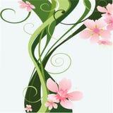Rama floral del vector con las hojas verdes Imágenes de archivo libres de regalías