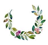 Rama hecha a mano de la acuarela de la guirnalda del círculo con las hojas Imagen de archivo
