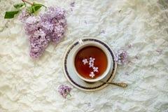 Rama hermosa de flores de la lila y de una taza de té Fotografía de archivo libre de regalías