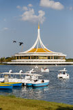 Rama IX Park with Duck Boats Royalty Free Stock Image
