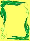 Rama jaskrawy - zieleń opuszcza i fryzuje na żółtym tle, Obraz Stock