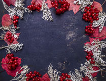 Rama jesieni dekoracj, jagod i liści miejsce dla teksta, ramowego drewnianego nieociosanego tła odgórny widok Obraz Royalty Free
