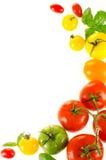 Rama kolorowi pomidory Obrazy Stock