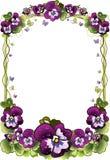 Rama kwiaty Zdjęcia Royalty Free