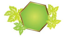 rama leafs wielobok Zdjęcie Stock