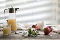 Rama, manzanas y un jarro con el jugo Fotografía de archivo libre de regalías