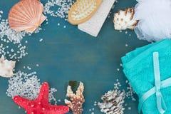 Rama morze skorupy i sól Zdjęcie Royalty Free