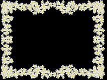 Rama od białych kwiatów fotografia stock