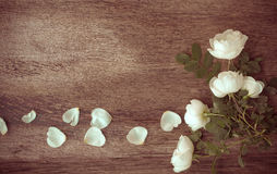 Rama od kwiatów na starzejącym się drewnianym tle Selekcyjna ostrość P Obrazy Stock