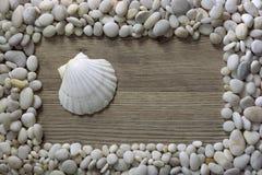 Rama od seashells i kamieni Rama robić skorupy odizolowywać na drewnianym tle Zdjęcie Royalty Free