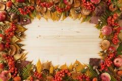 Rama od suchych kolorowych jesień liści, suchych i świeżych pieczarek, świezi różani biodra, rowanberry, jabłka na drewnianym tle Zdjęcia Stock