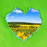 Rama od zielonego papieru serca Zdjęcie Royalty Free