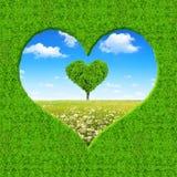 Rama od zielonego serca Fotografia Royalty Free