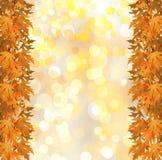Rama otoñal anaranjada del árbol en fondo abstracto Foto de archivo libre de regalías