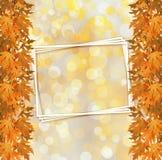 Rama otoñal anaranjada del árbol en fondo abstracto Imagen de archivo