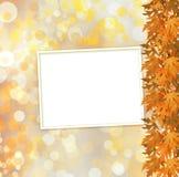 Rama otoñal anaranjada del árbol en fondo abstracto Fotos de archivo libres de regalías
