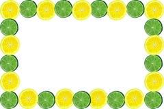 rama owoców cytrusowych ilustracja wektor