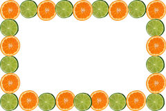 rama owoców cytrusowych royalty ilustracja
