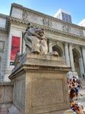 Rama principal de la biblioteca pública de Nueva York, Stephen A Edificio de Schwarzman, biblioteca Lion Patience, New York City, Fotos de archivo